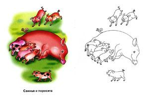 """Раскраска для детей """"Свинья и поросята"""""""