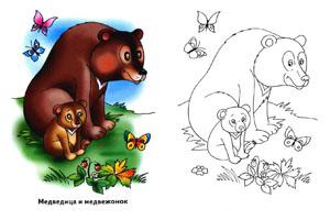 """Раскраска для детей """"Медведица и медвежонок"""""""