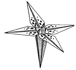 Оригами - цветок Ирис