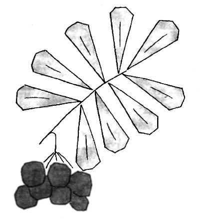 Ветка рябины оригами для детей