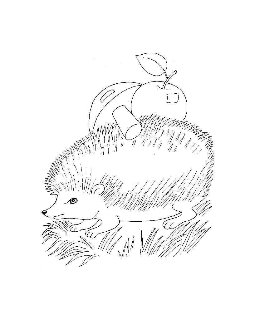 Раскраска для самых маленьких дикие
