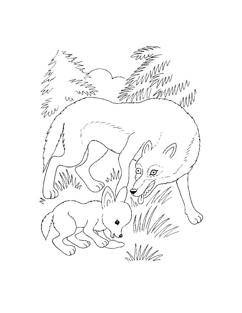 Для самых маленьких дикие животные