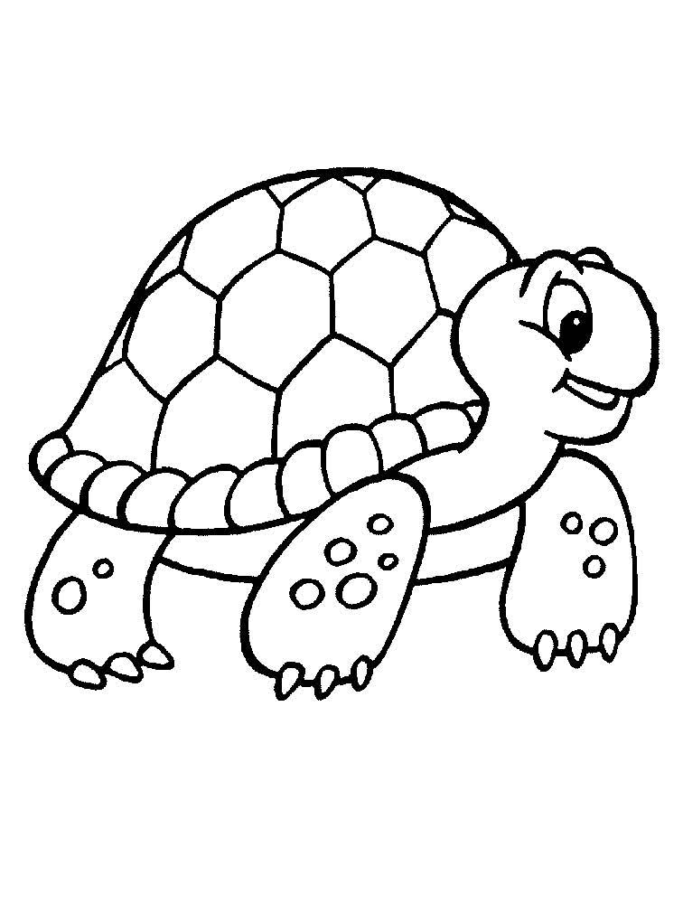 Картинка черепах раскраска