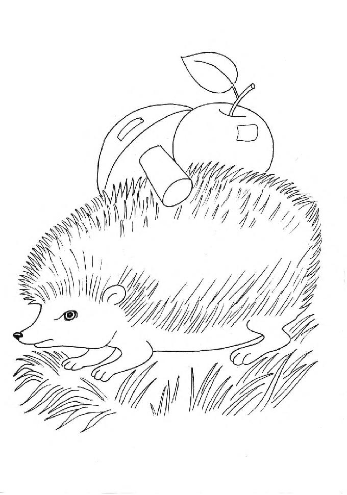развивающие игры про диких животных