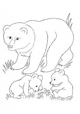 Детская раскраска про диких животных с образцом