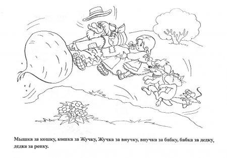 Хорошие раскраски из детской сказки Репка
