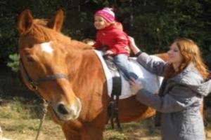 Лечение детей лошадьми - эффективно и позитивно