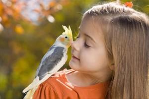 Наши детки: воспитание чудом