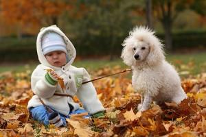 Как одевать ребенка осенью